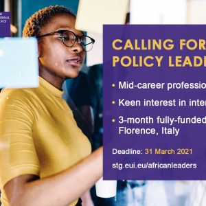 Young African Leaders Programme – Call for Policy Leaders